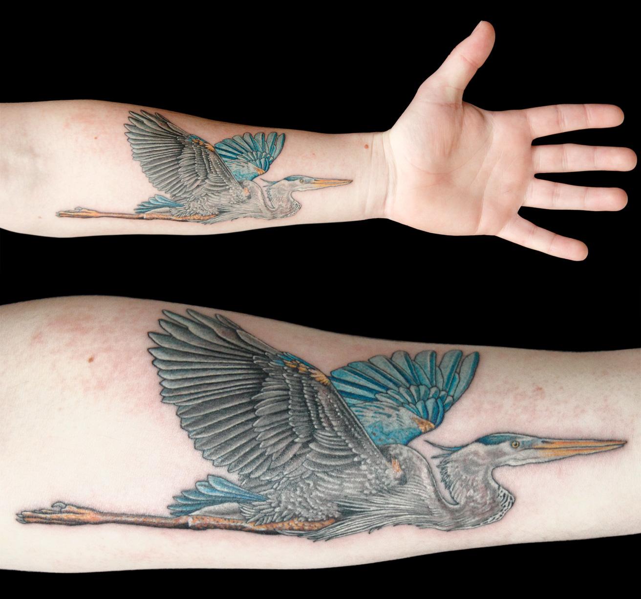 bg-liam-heron